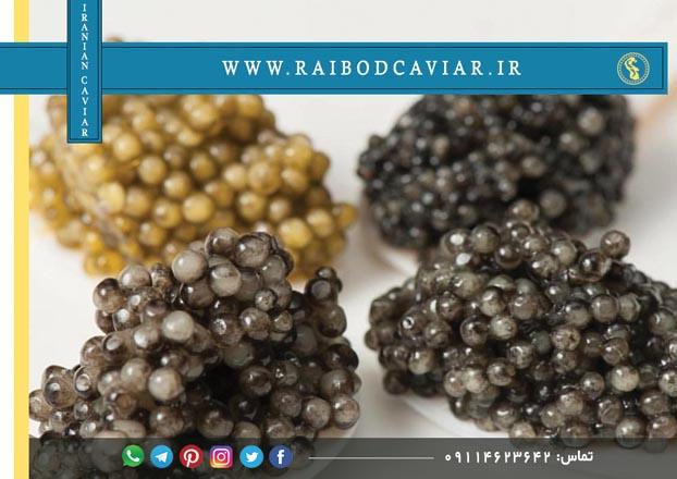 قیمت اشپل ماهی