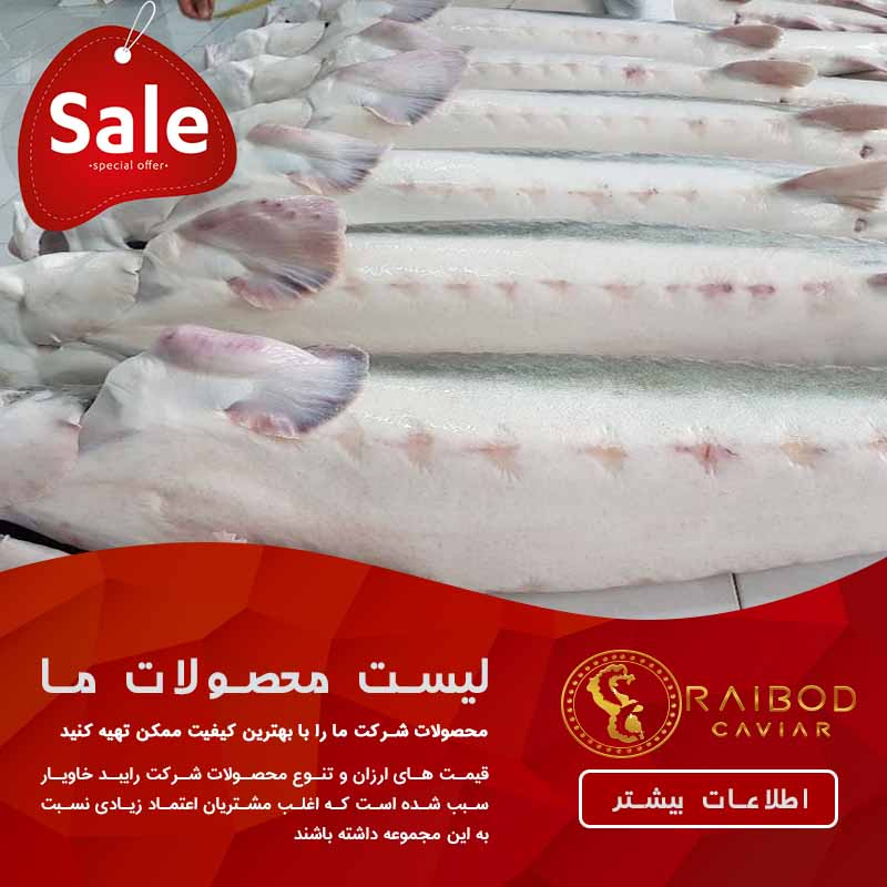 قیمت فروش ماهی خاویاری