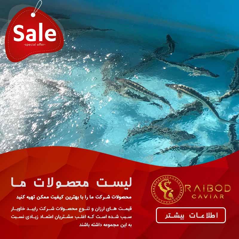 پرورش ماهی خاویار در شیراز