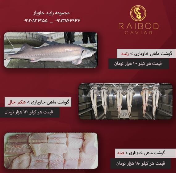 لیست قیمت خرید فیل ماهی درجه یک