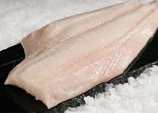 گوشت فیل ماهی