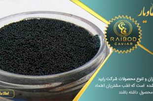 نمایندگی فروش خاویار شیلات ایران