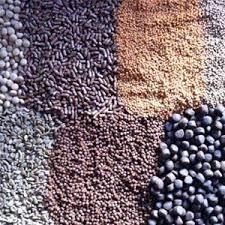 ایران یکی از تولید کننده های غذای ماهی خاویاری