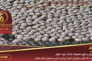 صادرات خاویار بلوگا به ترکیه