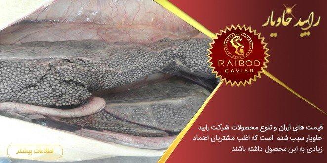 تولید و صادرات خاویار انزلی با قیمت مناسب