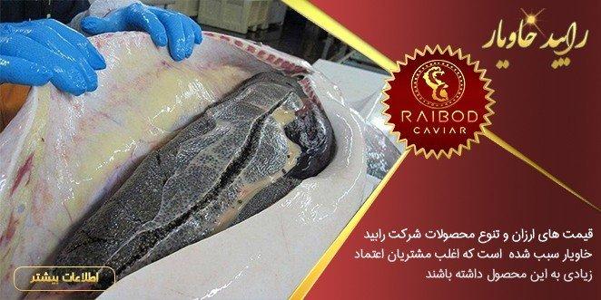 تولید و پرورش خاویار اصل ایرانی