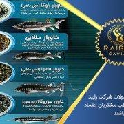 فروش انواع خاویار در تهران