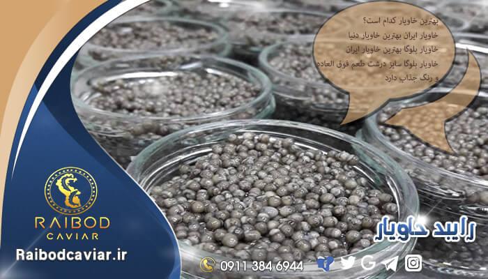 خرید خاویار اصل ایرانی